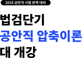 2018 공안직 시험 대비 법검단기 공안직 압축이론 대개강