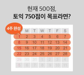 현재 500점, 토익 750점이 목표라면?