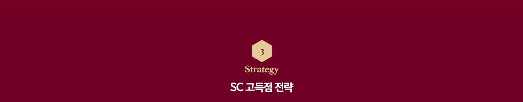strategy SC 고득점 전략