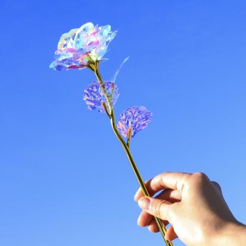 선셋플라밍고 홀로그램 장미 선물 세트