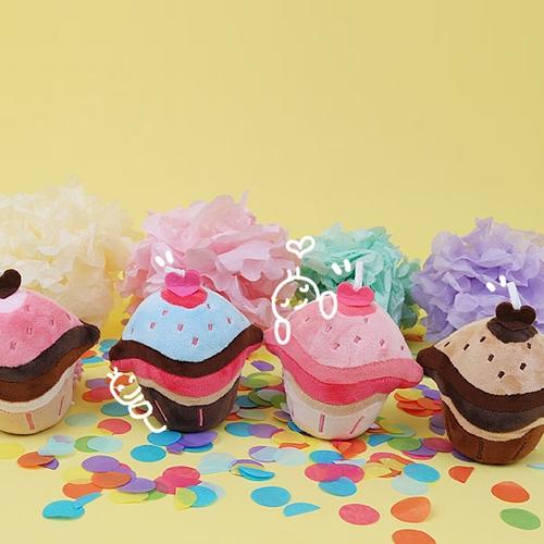 컵케이크 큐방 1+1