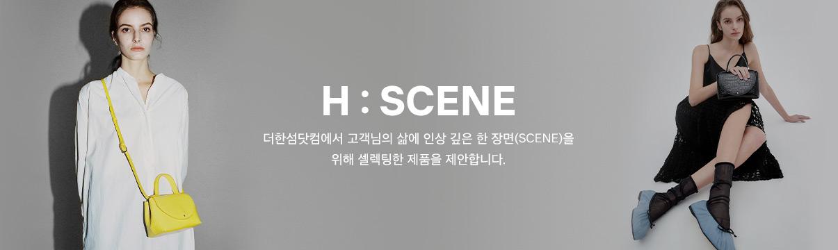H : SCENE