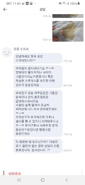 [오묘 수의사님 상담 후기💜]