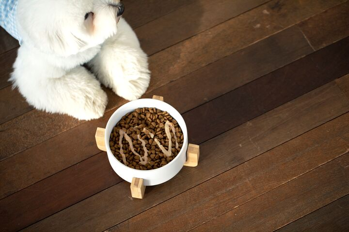 기호성 좋은 강아지 반습식 사료! 보관은 어떻게 하나요?