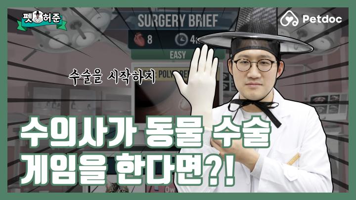 수의사 경력 10년 차… 이런 수술은 처음이오… I 펫허준 ep.6