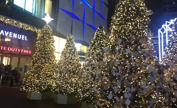 강남·서초 크리스마스트리 명소