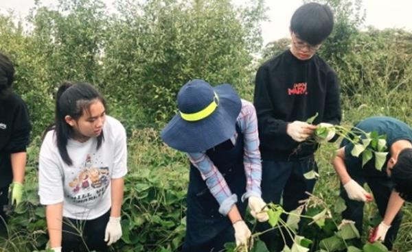 고양도시농부네트워크 '청소년농부학교' 좌충우돌 농사 체험기