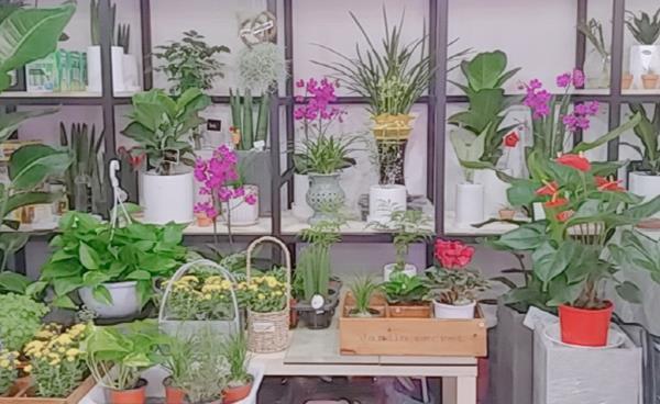 후곡마을 'Flower Day(플라워 데이)'