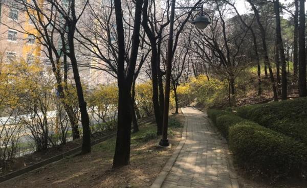 <봄 특집> 안전하게 봄을 즐기는 방법!