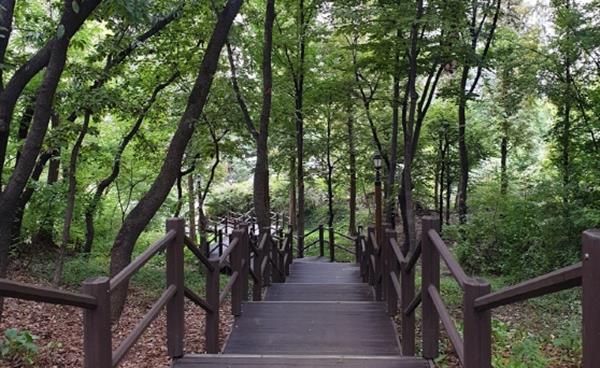 [지역기획] 가을날, 송파·강동 산책하기 좋은 곳