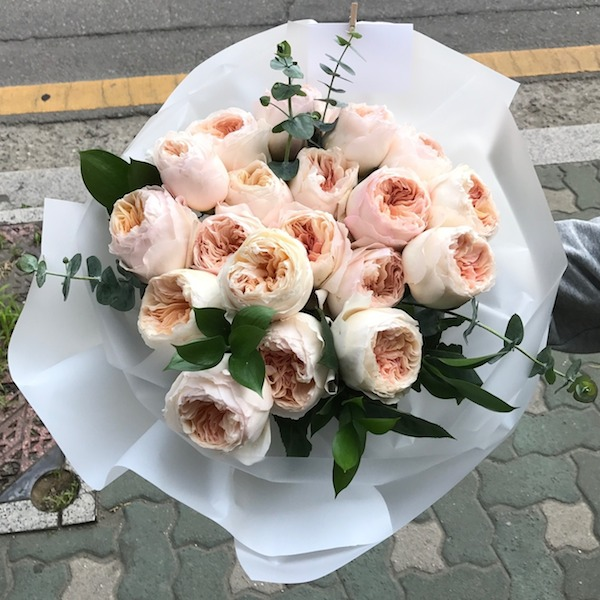 Garden Roses in Korea