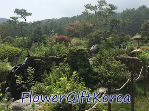 beautiful scenery in South Korea