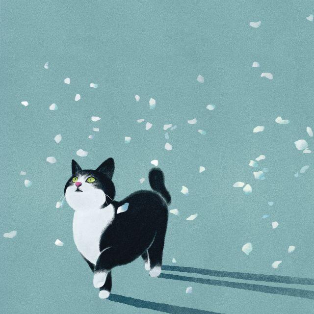 꽃잎고양이 by 햄햄