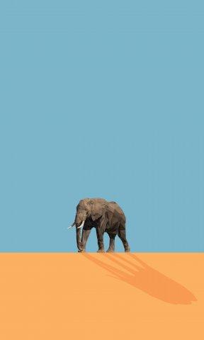코끼리 폴리곤아트 by kloo&ko