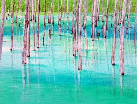 청의 호수 - 삿뽀로