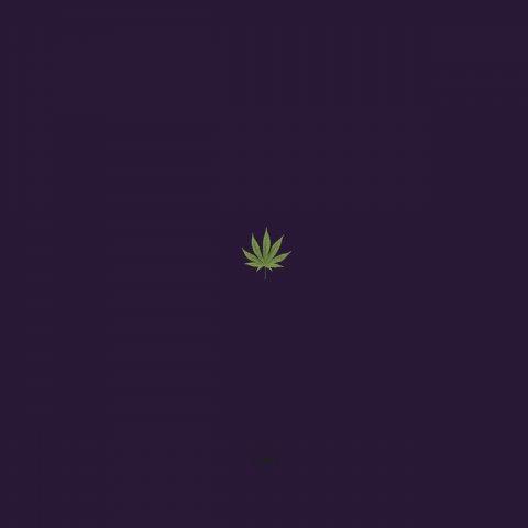 [weed] Bucket list no.0