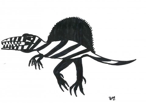 공룡연구3