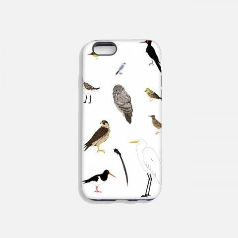 한국 멸종위기 조류 터프케이스