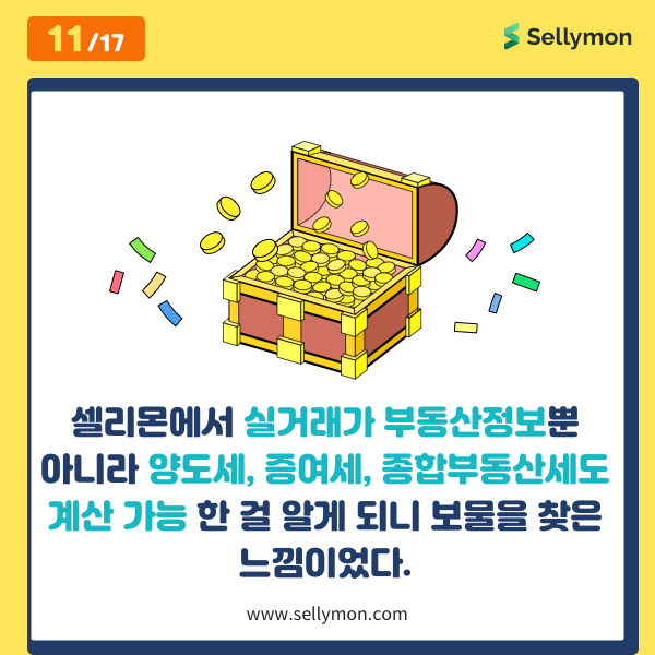 셀리몬 카드 뉴스
