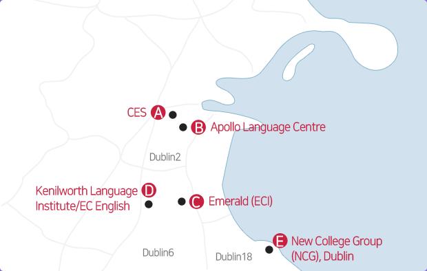 더블린 내의 학교를 표시한 지도