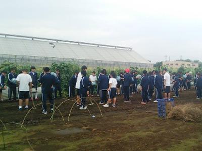 네리마 구 중학교의 농업 체험 수업