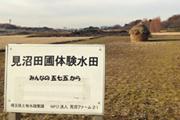 180_japan33
