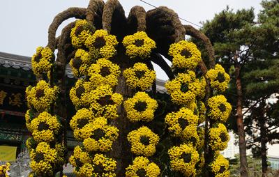 flower-400-254