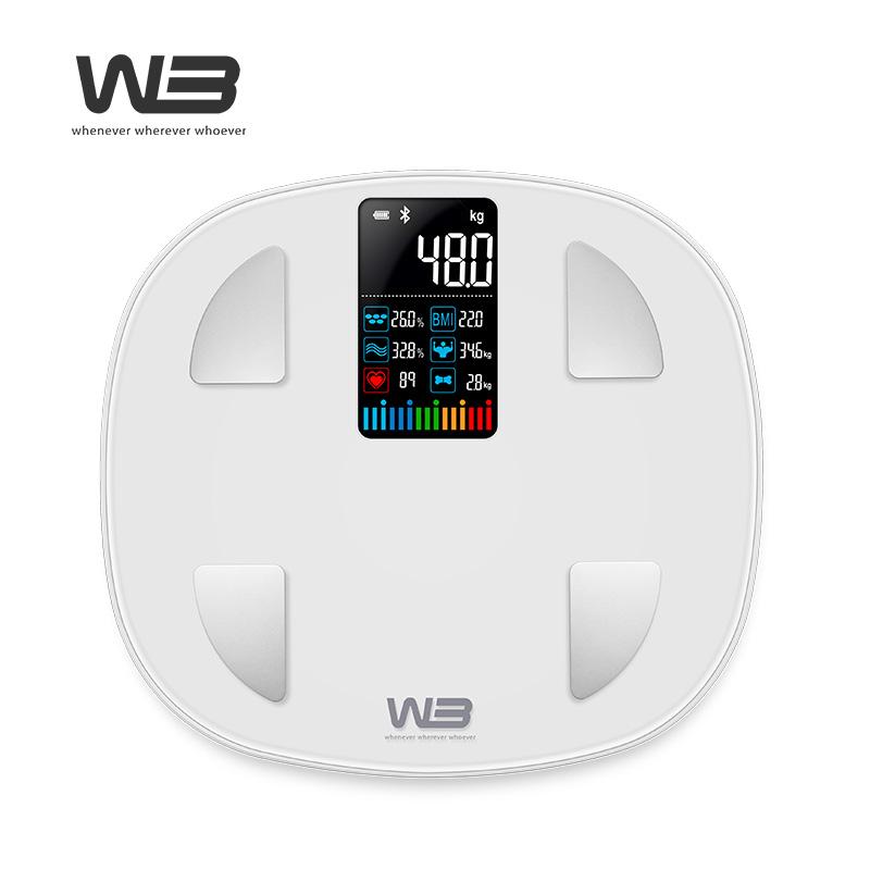[W3] 스마트 인바디 체중계 FITZAM