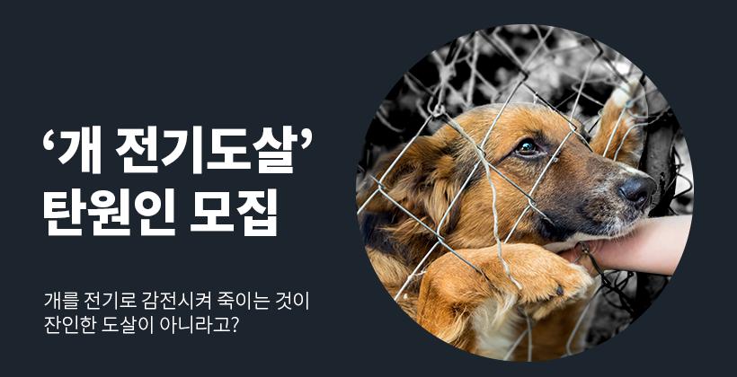 '개 전기도살' 사건  탄원인 모집