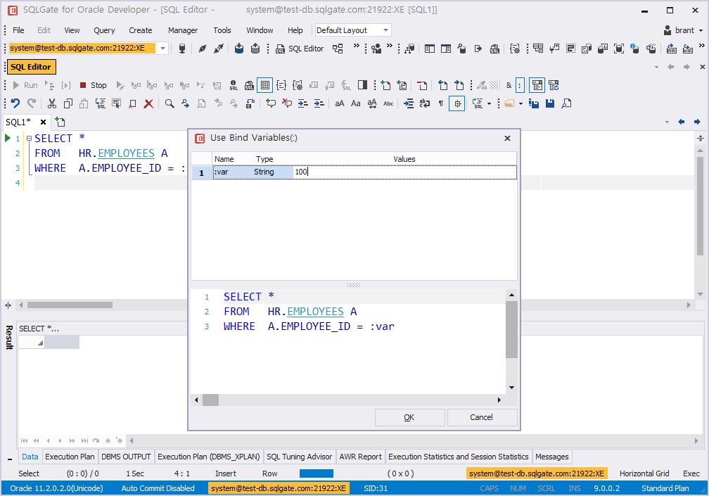 bind variables run sql