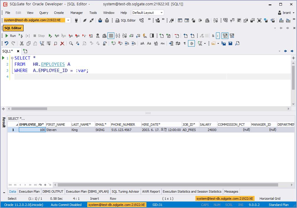 bind variables run sql result