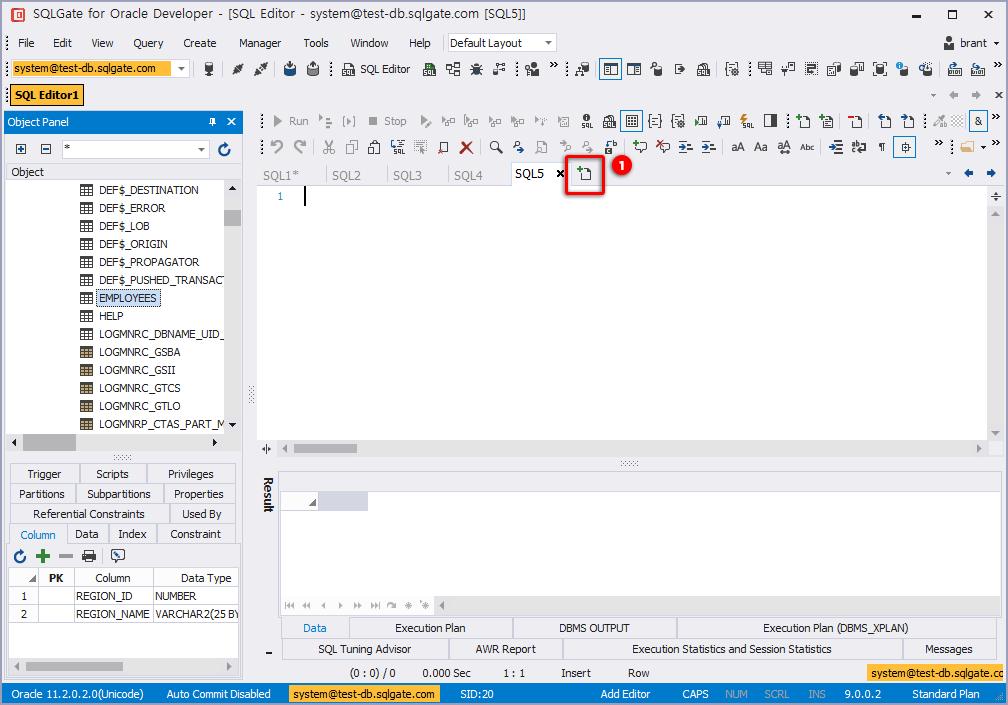 Add an Editor Tab and Run SQL