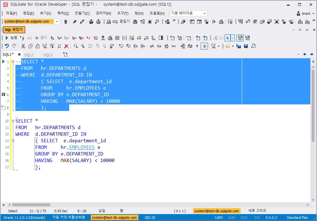 SQL 구문 주석 한 번에 추가하기