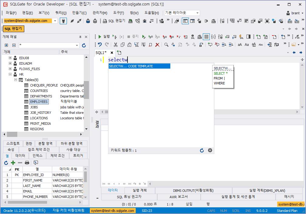 SQL 에디터에서 코드 템플릿 자동완성