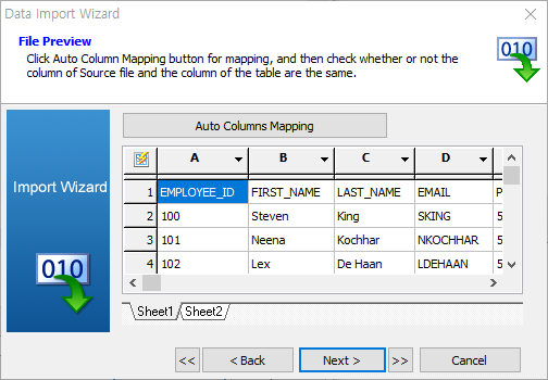 import data wizard file preview