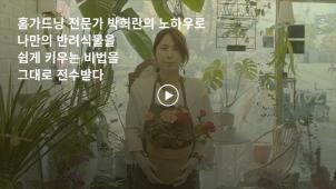 [0원강의][라이프스타일][원예] 반려식물 전문가 박희란의 혼족을 위한 홈가드닝 클래스_박희란
