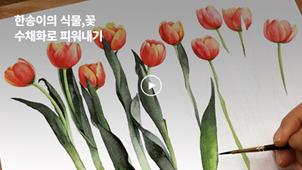 [0원강의] 안스와 함께 수채화로 그리는 한송이의 식물, 꽃_안스