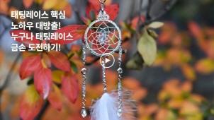[0원강의] 기초부터 중급까지 제대로 배우는 태팅레이스_태팅다마