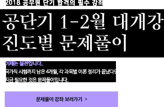 공단기 1-2월 대개강 진도별 문제풀이