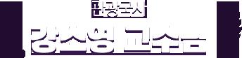 관광국사 강소영 교수님
