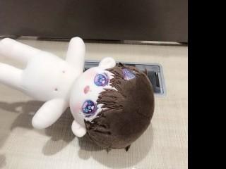 무속성 모범생/학교짱 1차폼