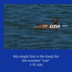 Learn the Kanji