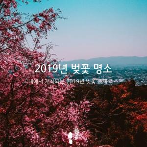 2019년 벚꽃 명소