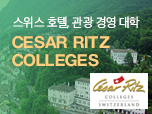 Cesar Ritz Colleges