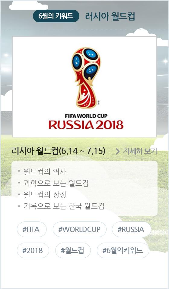 러시아 월드컵