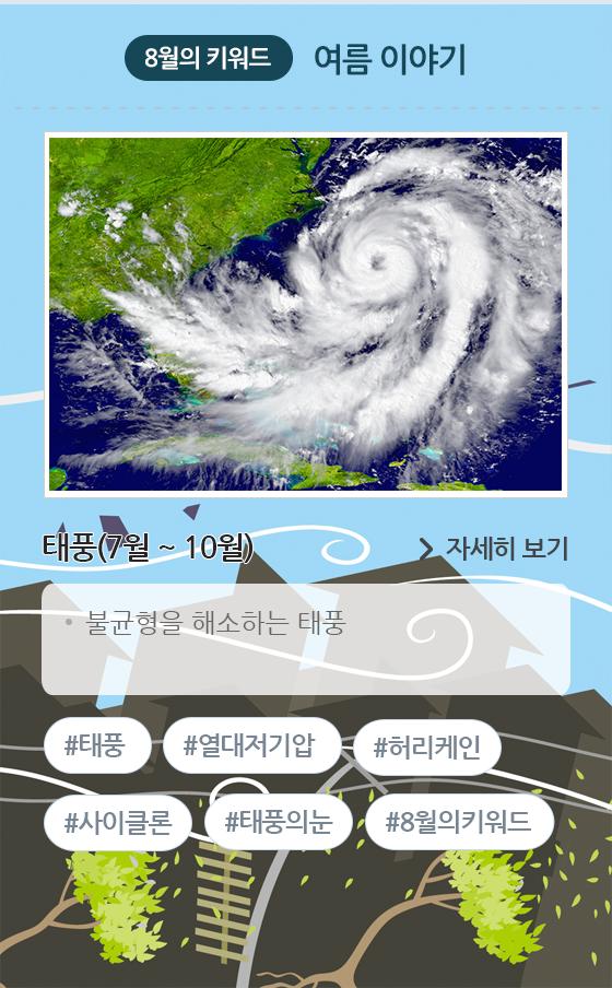 8월 태풍