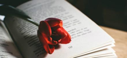 4월 23일은 세계 책과 저작권의 날!